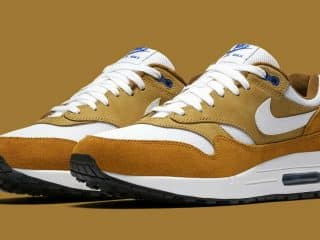 atmos x Nike Air Max 1 Dark Curry