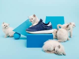 Sneakersnstuff x adidas I-5923