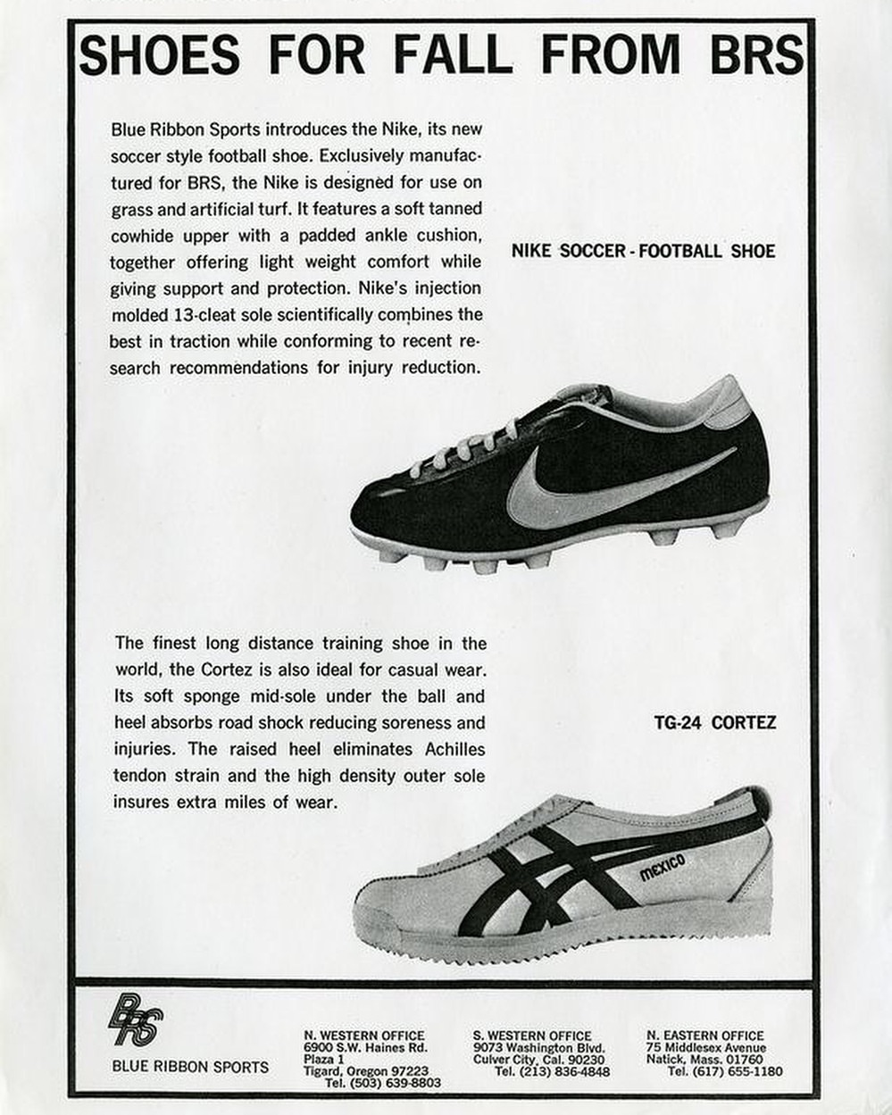 Blue Ribbon Sports - TG-24 Cortez