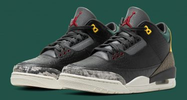 Air Jordan3 ''Animal Instinct 2.0''