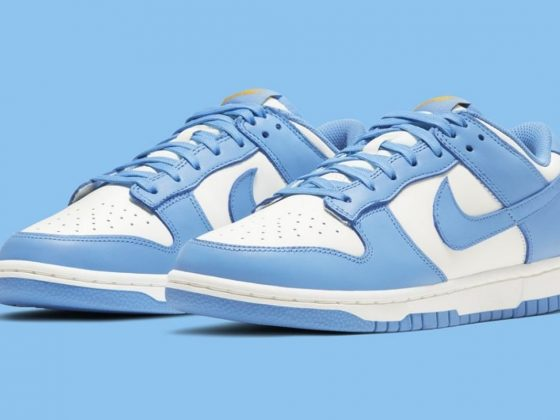 Nike Dunk Low ''Coast'' - DD1503-100