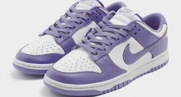NikeDunk Low ''Purple Pulse''