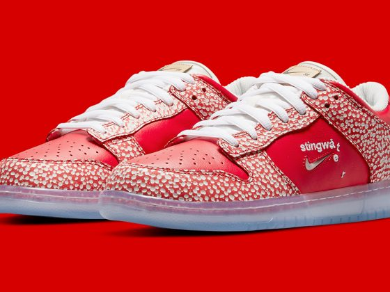 Stingwater x Nike SB Dunk Low ''Magic Mushroom'' - DH7650-600